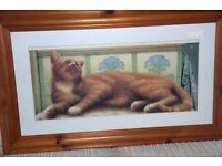 """ADORABLE MARMALADE PUSSY CAT PICTURE IN SOLID PINE QUALITY FRAME. 31"""" X19"""". £25.00"""