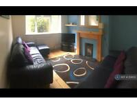 3 bedroom house in Guardian Road, Norwich, NR5 (3 bed)