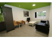 1 bedroom in NEW DEVELOPMENT FULLY FURNISHED LUXURY ACCOMODATION STUDENT/PROFESSIONAL ALL BILLS & CO