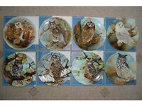 Set of 8 Owl plates by Michael Sawdy (boxed, as new)