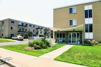 225-233 Capel: Apartment for rent in Sarnia - Pet Friendly