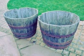 Two half barrels for planting (Chandlers Ford)