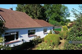 4 bedroom house in Manson Lane, Monmouth, NP25 (4 bed) (#1176402)