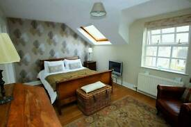 Beautiful room to rent