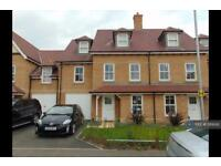 4 bedroom house in Sergeant St, Colchester, CO2 (4 bed)