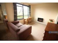1 bedroom flat in Cambridge, Cambridge, CB1 (1 bed)
