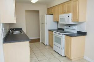 1 Bedroom with laundry (Conestoga Blvd & Can-Amera Parkway)