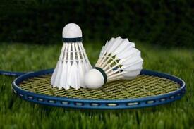 Badminton partner needed