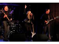Live Wedding & Party Band for All Occasions
