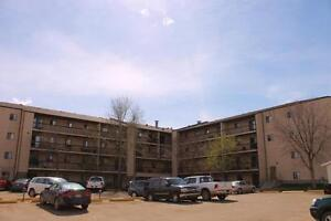 Spacious Family-Friendly 3 Bedroom Suites!