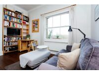 Large fully furnished period studio flat with separate kitchen