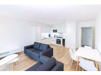 BRAND NEW LUXURY TWO BEDROOM TWO BATHROOM TERRACES, 5THFLOOR 24 HOUR CONCIERGE NEAR DLR GREENWICH