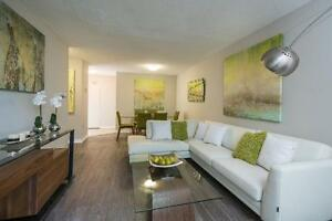 Modern Renovated One Bedroom in Strathroy - New Kitchens! London Ontario image 4
