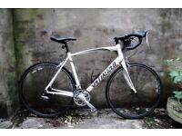 SPECIALIZED ALLEZ SPORT A1, 22 inch XL size, racer racing road bike, 18 speed, carbon fork