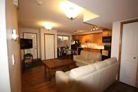 New walk out suite for rent in Sylvan Lake