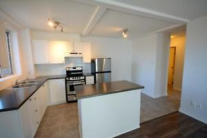 RENOVATED 1 BEDROOM NEAR TUNNEY'S PASTURE! JUNE 1ST