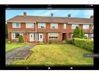 3 bedroom house in Ryhope Avenue, Stockton On Tees, TS19 (3 bed)