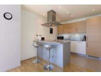 Amazing two bedroom two bathroom apartment in George Hudson Tower in Stratford, E15