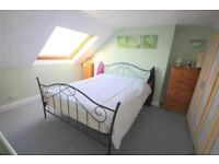 BEAUTIFUL BEDROOM IN STRATFORD --- CENTRAL LINE