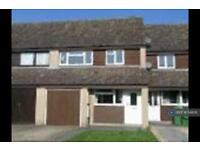 3 bedroom house in Evergreen Drive, Calcot, Reading, RG31 (3 bed)