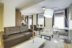 1BR Furnished - Flexible 4 to 8 month lease! #24