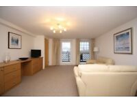 1 bedroom apartment with parking and stunning thames views in Canary Wharf E14, Docklands-TG