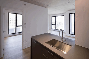 Brand New 2 Bedroom Condo, Steps from Atwater Metro