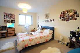 Three story property in Calypso Cresecent SE15; comprising of four double bedrooms & private garden