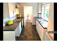 2 bedroom house in Well Street, Sunderland , SR4 (2 bed)