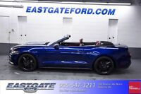2015 Ford Mustang Performance Pack-Convertible-