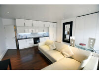 Lovely Large Modern, Fully Furnished, 2 Bed, FF Flat, Ashley Rd, Open Plan