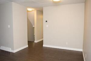 Spacious Apts for Western Students! Parking & Internet Included! London Ontario image 4