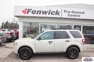 2009 Ford Escape XLT - Accident Free