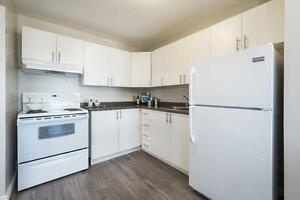 Renovated Two Bedroom in Kitchener - Don't Miss Out!! Kitchener / Waterloo Kitchener Area image 4