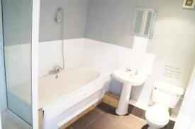 Large 2 bed ground floor flat to let