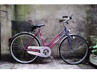 HERCULES TENERIFFA, 21 inch, 53.5 cm,vintage dutch ladies womens road bike, with basket, pedal brake