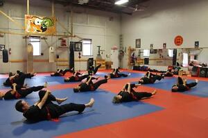 Unique Fitness Program for Adults Over 45 Kitchener / Waterloo Kitchener Area image 5