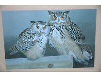 """FRAMED LIMITED EDITIION SIGNED PRINT OF 2 SIBERIAN EAGLE OWLS BY ARTIST KENNETH SMITH. 18"""" X 22"""""""