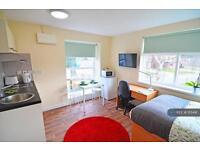 Studio flat in Handsworth, Birmingham, B20