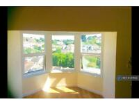 1 bedroom flat in Higher Manor Road, Brixham, TQ5 (1 bed)