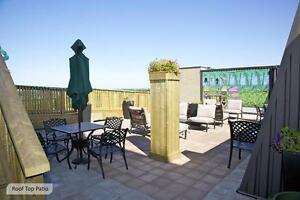 St. Thomas 1 Bedroom Apartment for Rent: Rooftop pool, gym, A/C London Ontario image 2