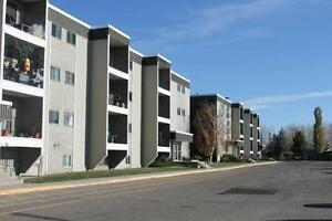 Furnished suites within walking distance to the U of L!