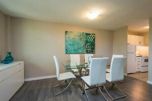 ONE BEDROOMS FOR JANUARY IN CORE AREA London Ontario image 5