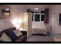 Studio flat in Horseshoe Lane, Watford, WD25