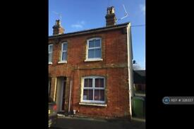 1 bedroom flat in Jubilee Road, Basingstoke, RG21 (1 bed)