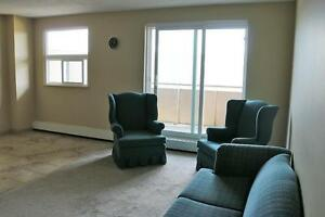 Need more room? Spacious 3 Bedroom Brantford Apartment for Rent