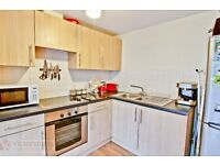 Well-presented SPACIOUS one bedroom SECURE GATED DEVELOPMENT 5mins Old Street Station