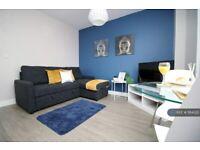 1 bedroom flat in Elm Street, Cardiff, CF24 (1 bed) (#1184322)