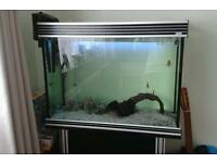 Fish tank 160 ltr tropical