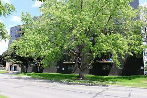 1 Bedroom Apartment for Rent in Sarnia: Transit right outside Sarnia Sarnia Area image 1